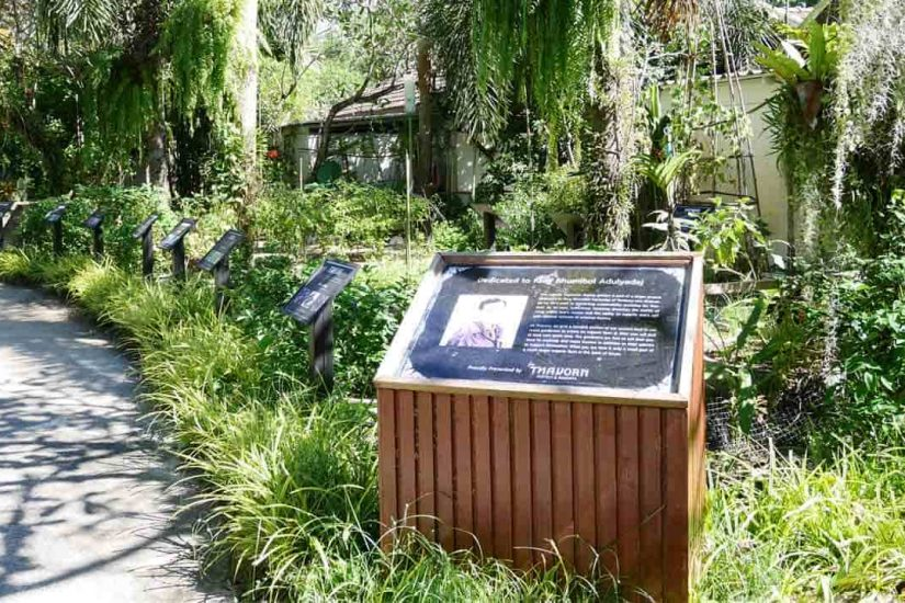 organic-garden-phuket