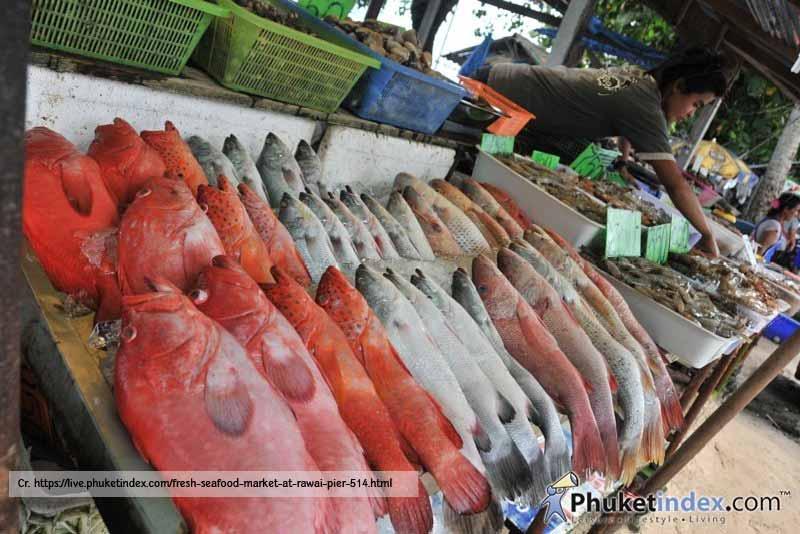 Rawai-Fish-Market-Phuket-Seafood
