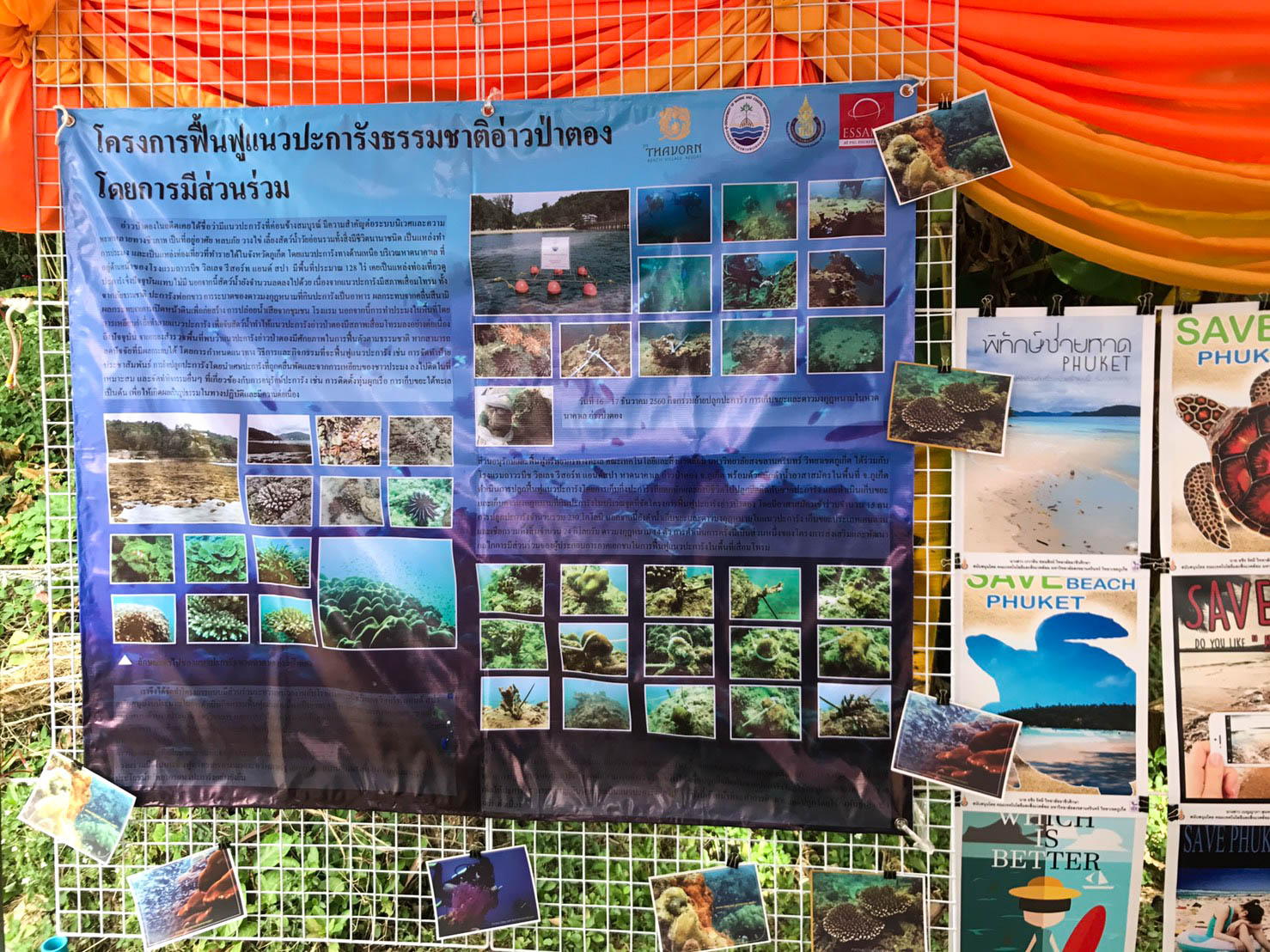 Coral Reefs Conservation