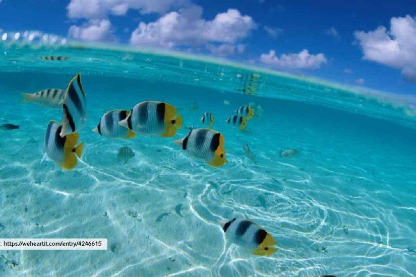 Andaman Sea Phuket