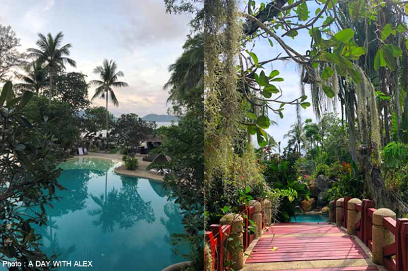 The Best Jungle Resort of Phuket, Thailand