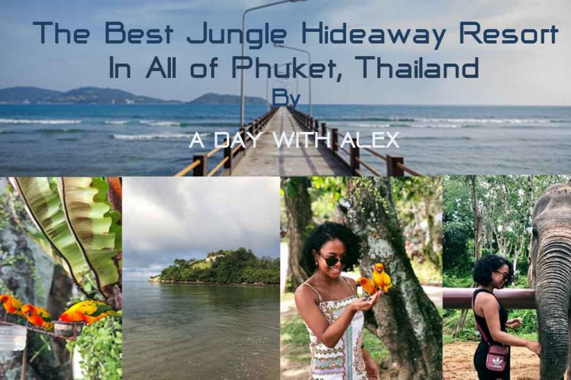 The Best Jungle Resort of Phuket, T