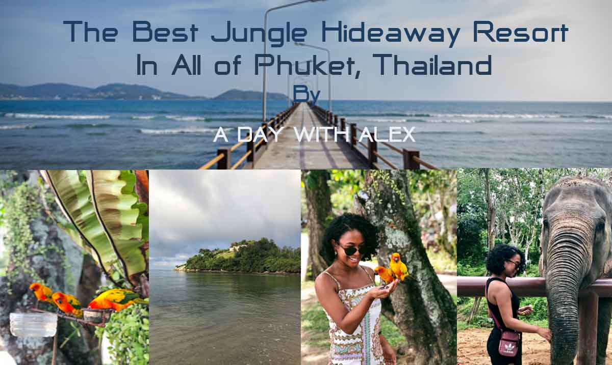 The Best Jungle Resort of Phuket, T